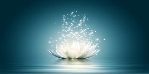 meditacion zen hara